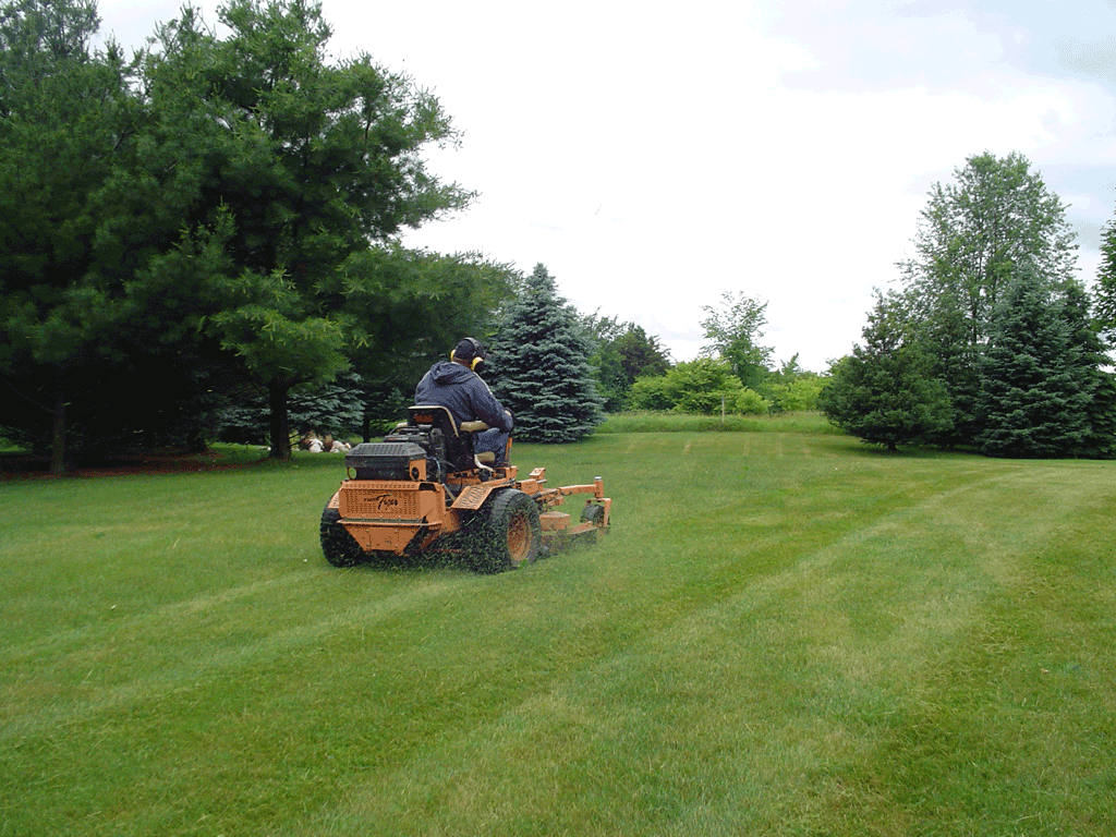 Lawn maintenance related keywords suggestions lawn for Garden maintenance